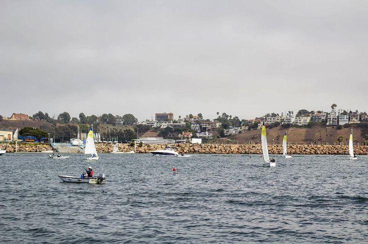 Untitled. Location: Los Angeles California : Canon Rebel T3I / Canon 80-200mm f/4.5-5.6  #sailing #sail #sailboat #marina #marinadelrey #losangeles #la #california #ca #usa #canon #eos #rebel #t3i #beach