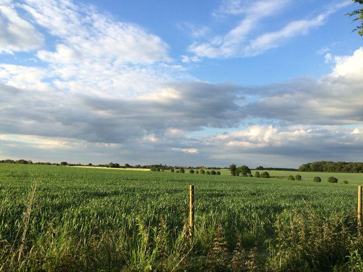 Views across Norfolk, England