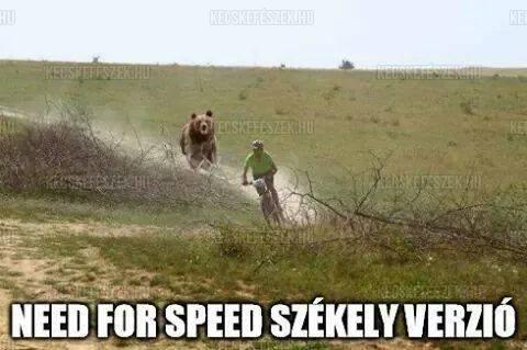 Need for Speed - Székely verzió