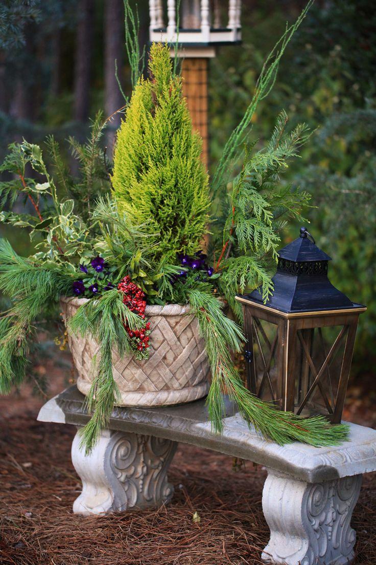 66 best Winter Wonderlands images on Pinterest | Winter wonderland ...
