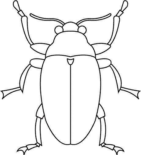 27 mejores imágenes de Bugs en Pinterest | Bugs, Colorante y Escuela