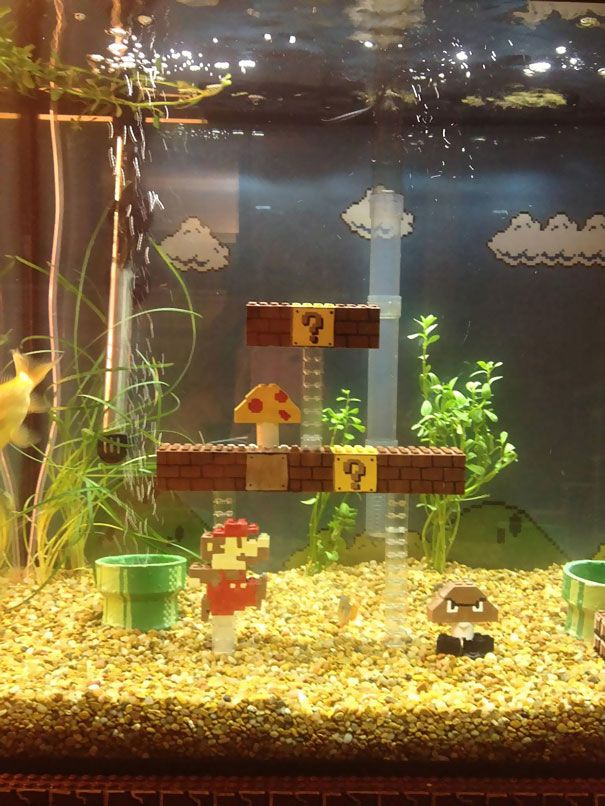 Super Mario Aquarium. Only way it would be cooler is if it was an underwater level.