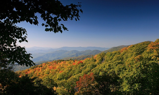 A Splash of Fall ... view from  the Blue Ridge Parkway, just north of Mt. Mitchell in North Carolina | by Ben Pierce Photography on Flickr