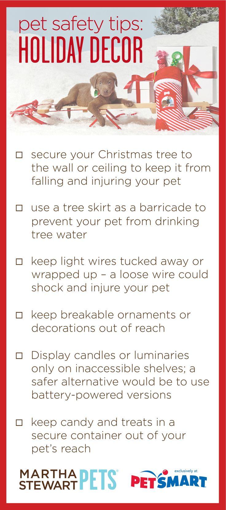 Holiday Pet Safety: Holiday Decor | #marthastewartpets @petsmartcorp #petcare #pettips #petsafety