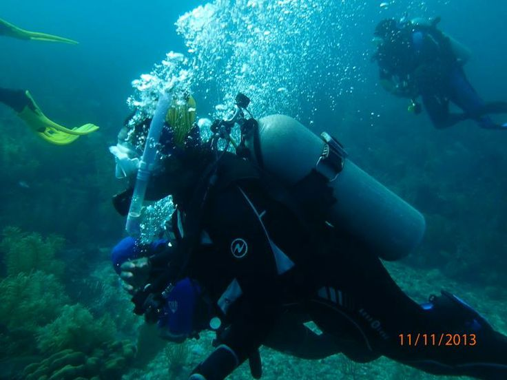 Donna Goode of National Assoc. of Black Scuba Divers #NABS ...
