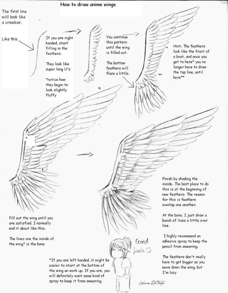 Drawing tutorial for wings. I love how at the end she says that the bottom feathers don't have to be so big but she's lazy xD
