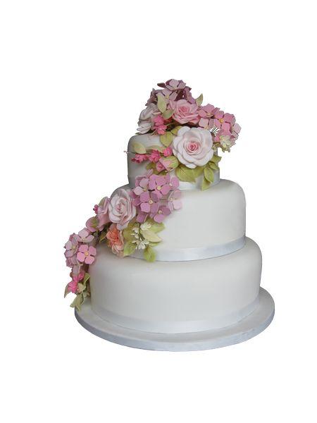 Sugar Roses, Carnations, Hydrangeas & Blossoms  #sugarflowers #sugarart #sugarcraft #cakeart #cakedecorating #sugarflower #cakeartist #sugarpaste #gumpaste #sugarartist