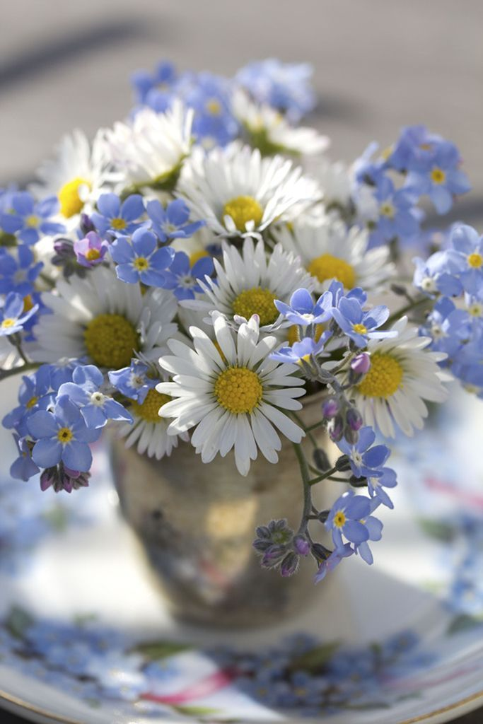 .Love the combination of white daisies and forget me nots. Simple and beautiful.