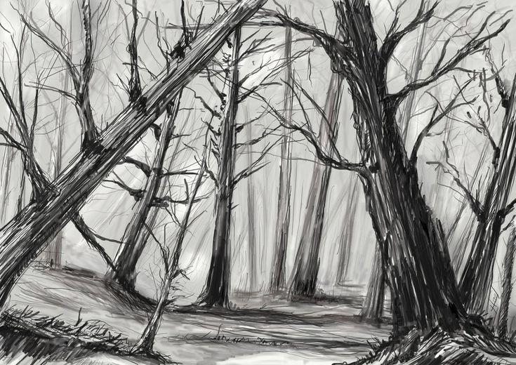 dessin arbre foret realiste - Recherche Google | Dessin arbre, Paysage noir et blanc, Forêt mystique
