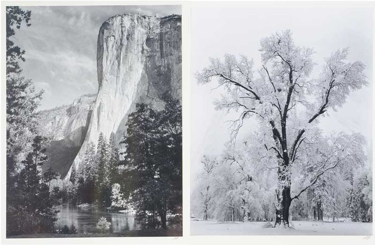 """ANSEL ADAMS (Californian 1902-1984) """"El Capitan"""" and """"Oaktree, Snowstorm"""" Silver gelatin print #michaans #photography #anseladams #auctions http://www.michaans.com/highlights/2016/highlights_11122016.php"""