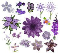 Lenagold - Клипарт - Фиолетовые цветы