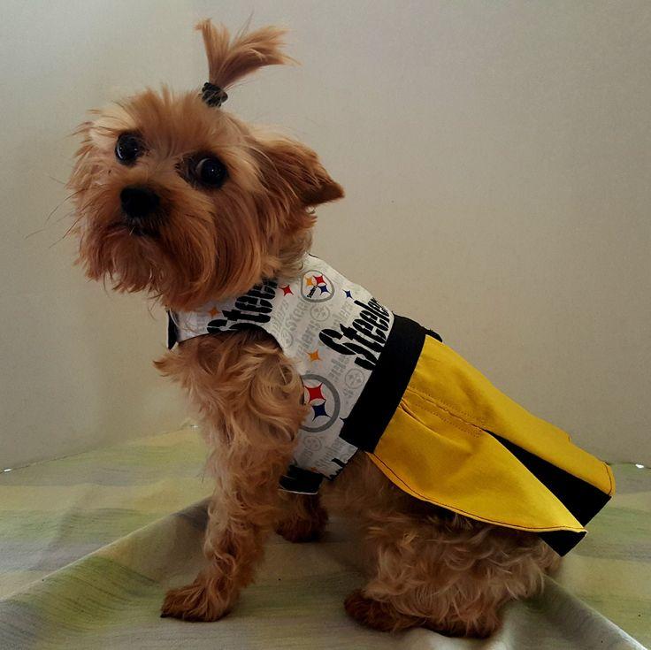 cbe7a4d0906 ... Steelers Sparo Rugged Pet Collar Steeler Cheerleader Dress ...