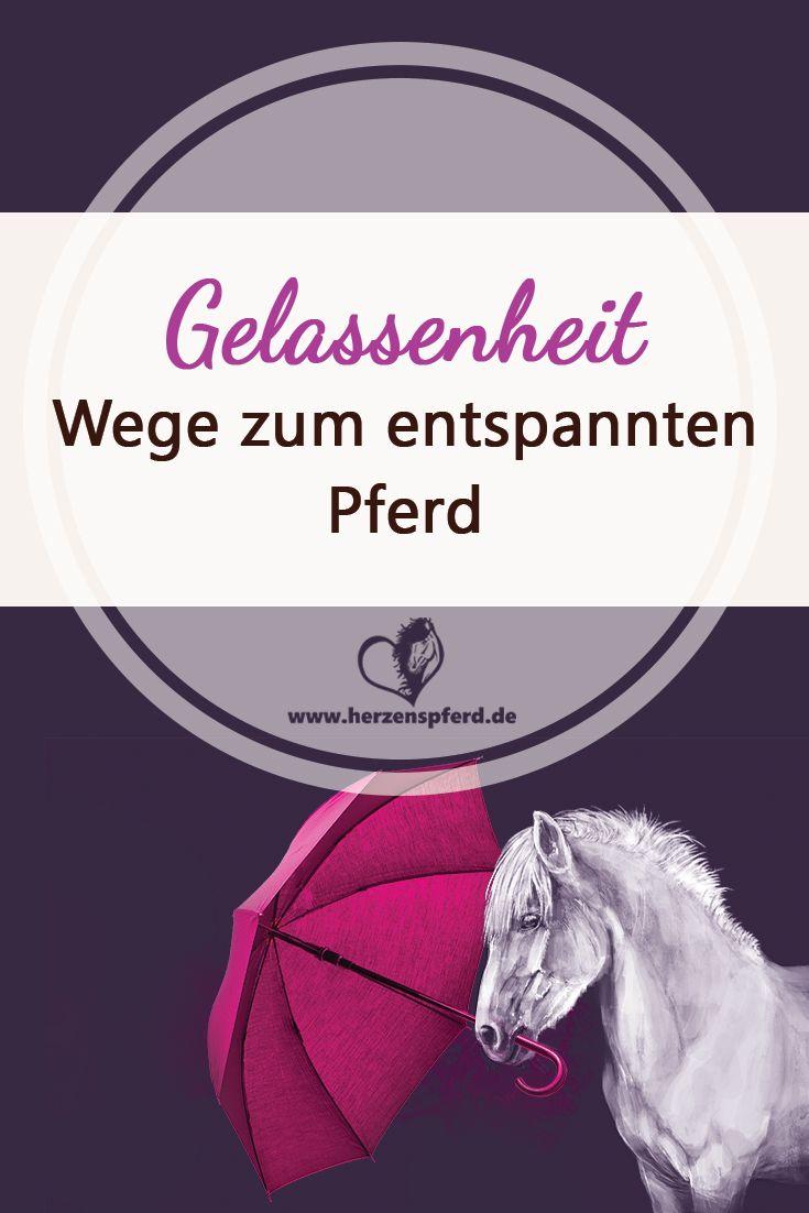 Gelassenheitstraining - Wege zum entspannten Pferd!