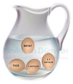 Taze Yumurta Nasıl Anlaşılır