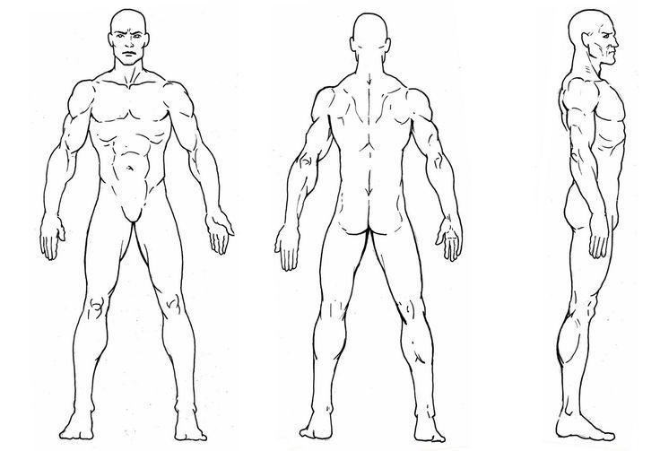Male Character Design Sheet : ÇßÈÑ ãßÊÈÉ ÚÑÈíÉ ÈáæÈäÊ ááßÇÑßÊÑ model sheets