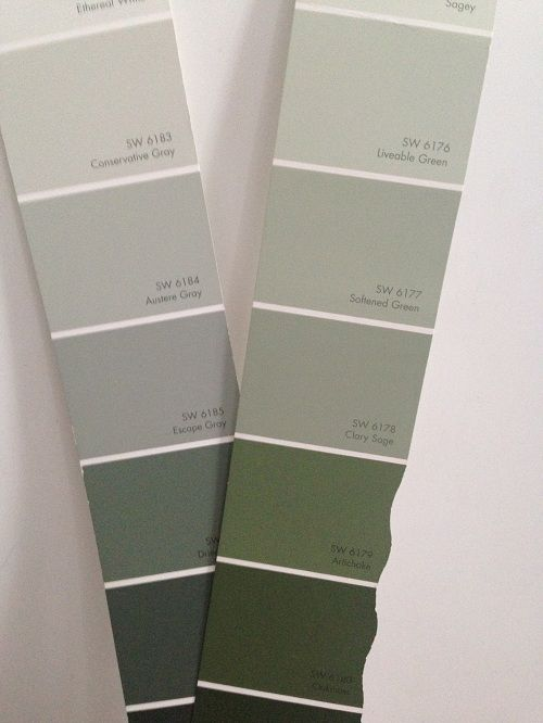 Sherwin Williams Clary Sage Paint Color Appears Green Compared to Gray