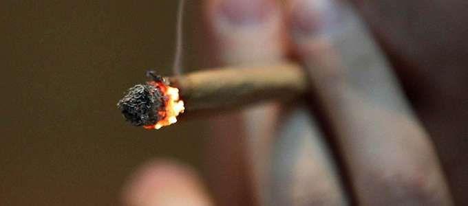 "La marijuana uccide le cellule tumorali: lo dicono gli scienziati ""La marijuana uccide le cellule tumorali: lo dicono gli scienziati"""