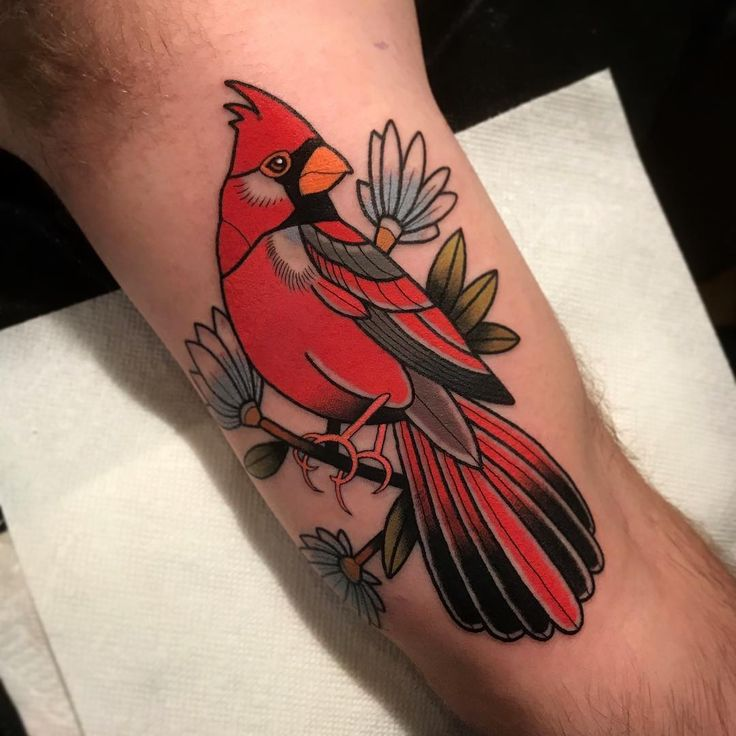 25 unique cardinal tattoos ideas on pinterest red cardinal tattoos feather tattoo quotes and. Black Bedroom Furniture Sets. Home Design Ideas