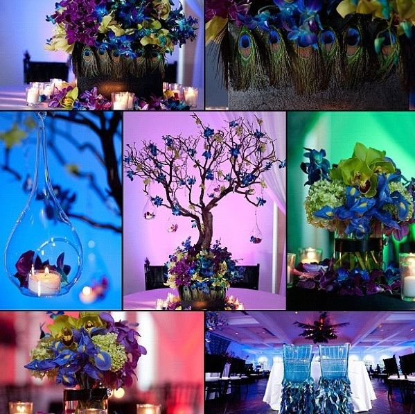 Peacock Wedding Centerpieces Ideas: 26 Best Weddind Decor Images On Pinterest
