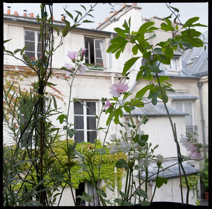 Les 176 meilleures images propos de terrasses balcons sur pinterest planters terrasse sur - Jardin suspendu paris argenteuil ...