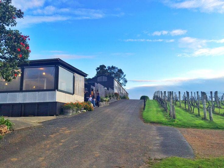 Te Motu Vineyard Waiheke Island www.enjoi.nz