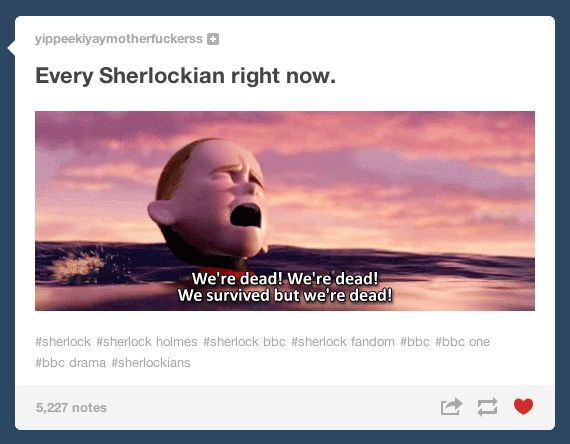 "And they were 100% correct: | Tumblr Reacts To The ""Sherlock"" Season 3 Premiere. SPOILERS!!!"
