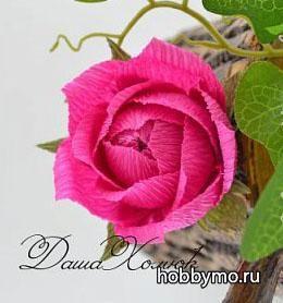 Розочка из конфет и гофрированной бумаги,,роза из конфет,розы из  конфет,цветы из гофрированной бумаги,цветы из конфет,роза из гофрированной бумаги,розы из гофры,гофрированная бумага,цветы из гофры