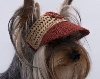 Gorra de béisbol del perro