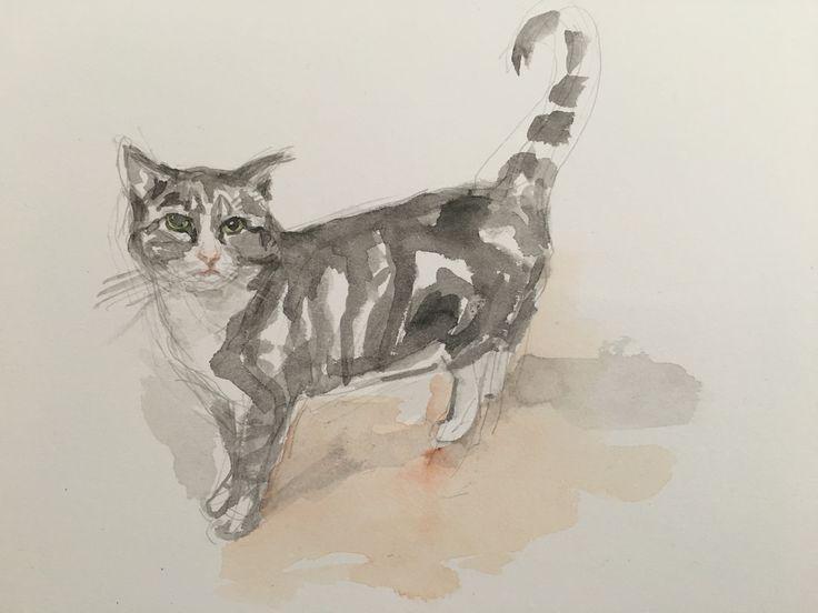 pet commission (SOLD)