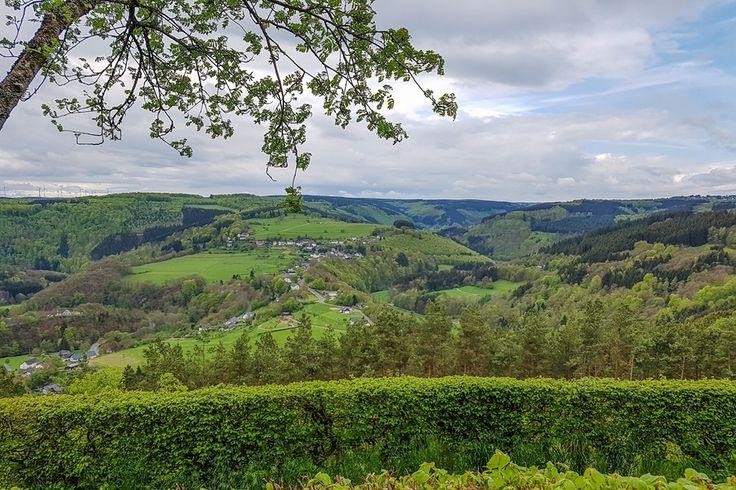 Die Eifel für Genießer  #eifel #genuss #genussreisetipps #rursee #eifelnationalpark
