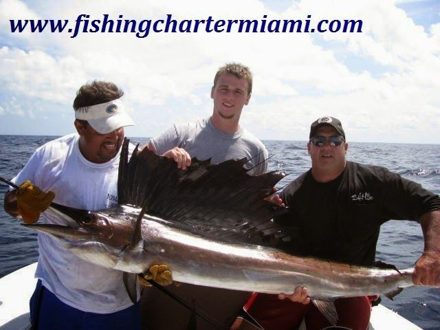27 best images about miami deep sea fishing charter on for Miami fishing supply