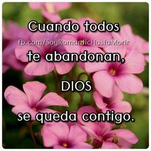 11 best flores y frases images on Pinterest | Christian quotes ...