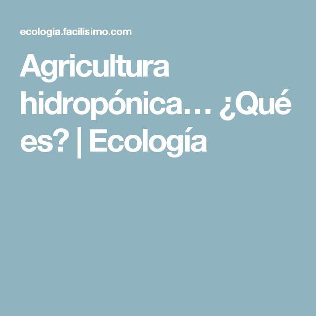 Agricultura hidropónica… ¿Qué es? | Ecología