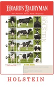 Judge some dairy cattle!