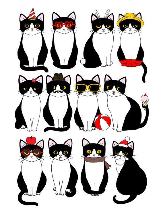 Twelve Tuxedo Cats 8 X 10 Art Print In 2020 Cat Art Print Cat