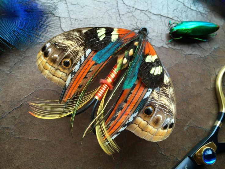 1000 ideas about fishing lure decor on pinterest cork for Fishing lure decor