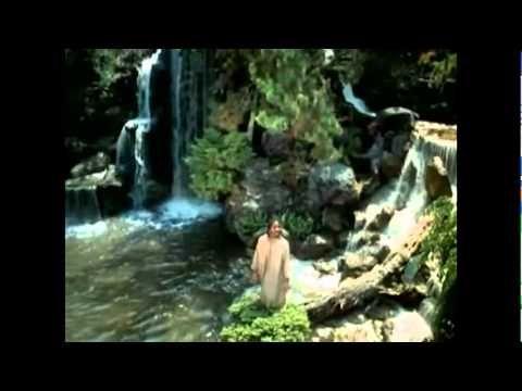 "Stevie Wonder ~ The Secret Life Of Plants From the 1979 soundtrack ""Stevie Wonder's Journey Through The Secret Life Of Plants"""