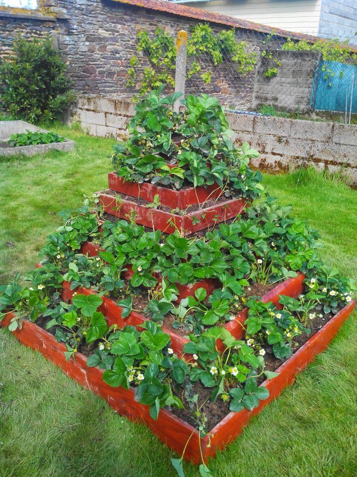 R novation transformation restauration maison fontaine for Agencement de jardin potager