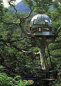 Magnifica casa futuristica!