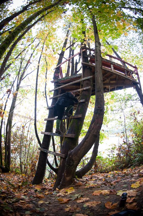 How to Build a Treehouse (Because They're Basically the Coolest Houses Ever)