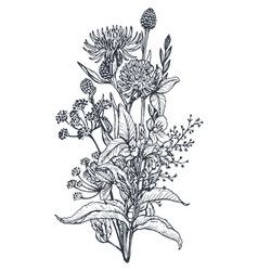 Floral Bouquets With Herbs And Wildflowers Vector Wildflower