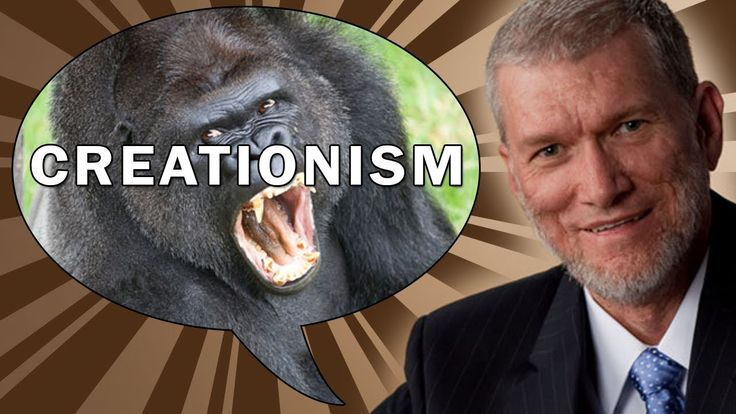 The Amazing Atheist Answers 22 Creationists