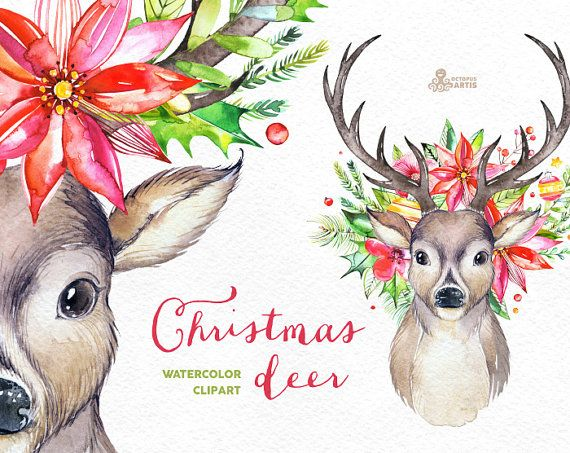 This set of 6 high quality hand painted watercolor deers, antlers and floral. Perfect graphic for christmas holiday, wedding invitations, greeting