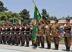 This is a picture of independence day in Afghanistan in the year 2011. Jeshyn-Afghan Day, The British relinquished their control on the foreign affairs of Afghanistan. It is celebrated as Independence Day.
