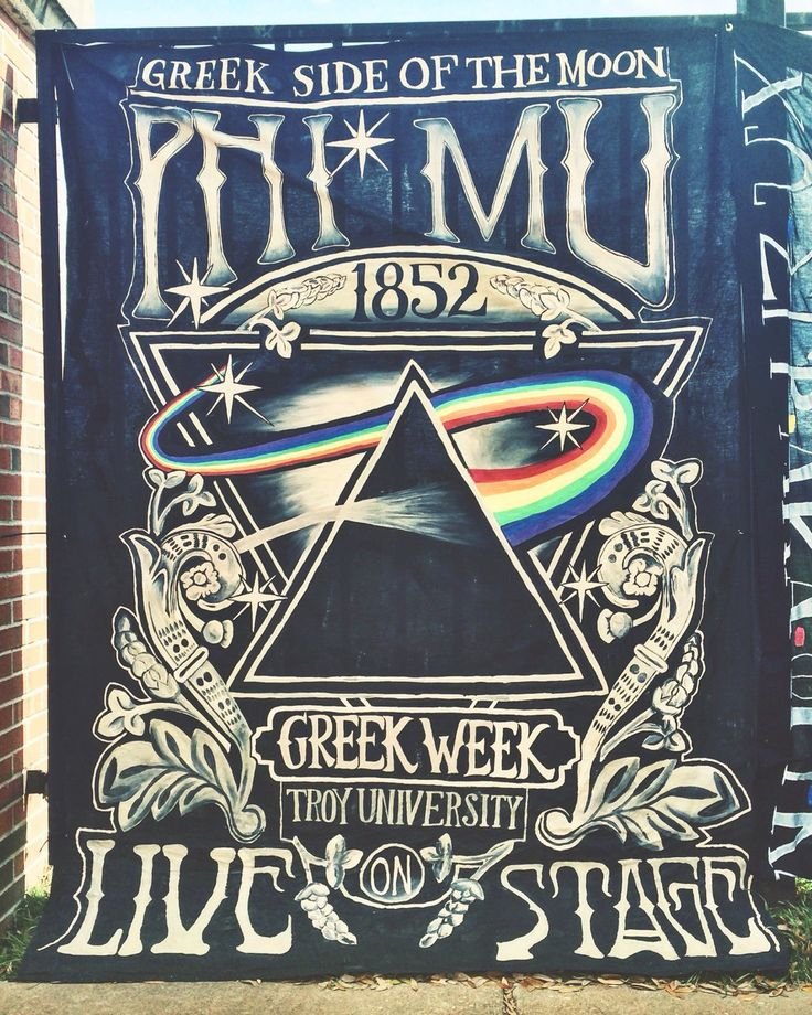 Troy University Greek Week 2016 - Phi Mu banner