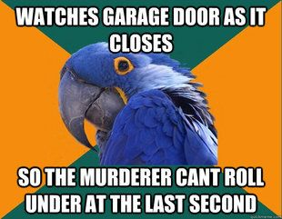 God is it awful Every paranoid parrot Meme is talking about my life?
