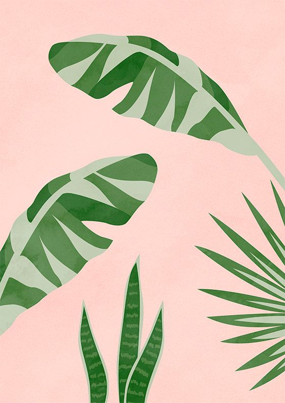 This is a digital file, available for download in various print sizes instantly upon purchase. No physical product will be shipped. Plants On Pink II by peachlings