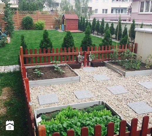 Aranżacje wnętrz - Ogród: Moje zielone made in warsaw - Duży ogród za domem z ogródkiem warzywnym, styl tradycyjny - martynka. Przeglądaj, dodawaj i zapisuj najlepsze zdjęcia, pomysły i inspiracje designerskie. W bazie mamy już prawie milion fotografii!
