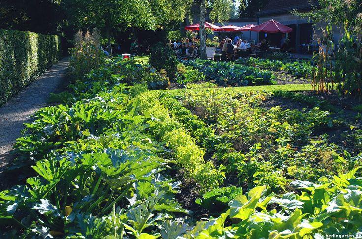 Berlin-Tipp für Gartenbegeisterte, Spaziergänger und Radfahrer: der Landhausgarten Fränkel in Kladow. Am besten noch mit Schiffchenfahrt über den Wannsee