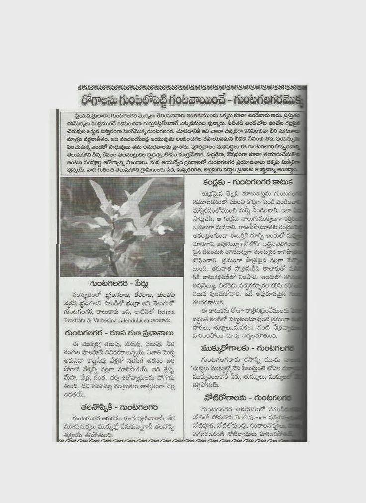AYURVEDAM ఆయుర్వేదం Ayurvedic practitioner, Ayurveda